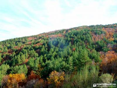 Hayedo Tejera Negra; viajes noviembre charca verde pedriza rutas a pie por madrid